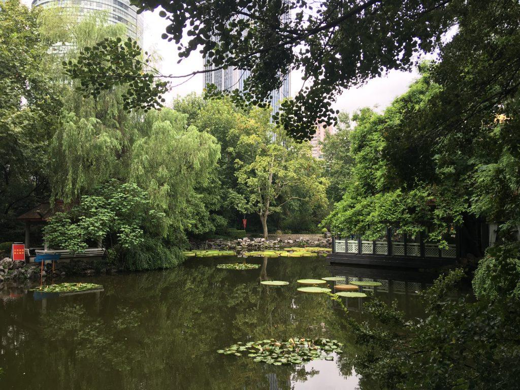 parco adiacente alla Piazza del popolo durante l'itinerario in Cina