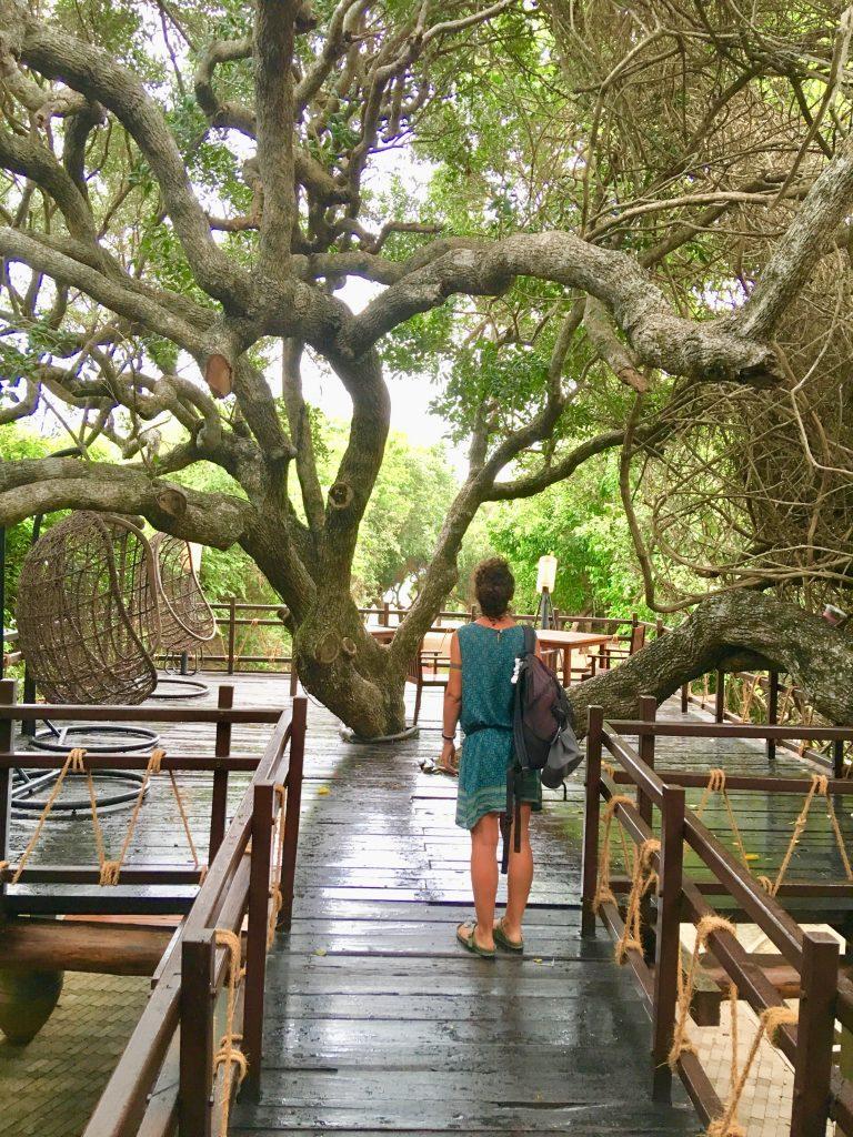 Eco-hotel nel nostro itinerario di 13 giorni in Sri Lanka