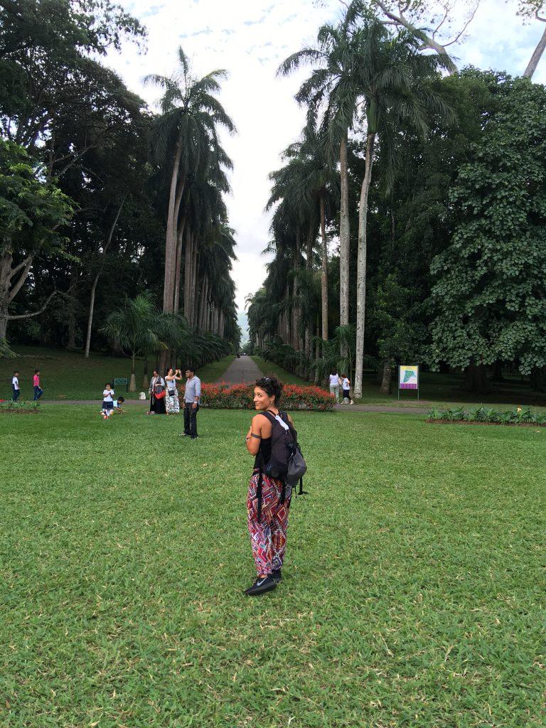 Peradeniya Botanic Gardens tappa del nostro itinerario in 13 giorni in Sri Lanka