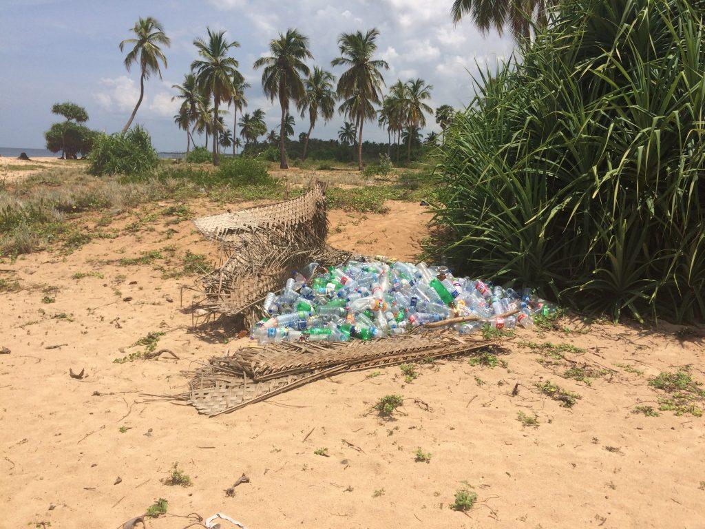 Plastica Piantagioni nel nostro itinerario di 13 giorni in Sri Lanka